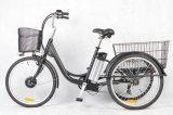 36V250W E-Trike a la venta (FR-FV02Z)
