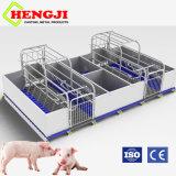 Casa de partos de cerdo con piso de hierro fundido