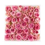 Boîte-cadeau acrylique transparente populaire des prix bon marché pour des fleurs de Rose