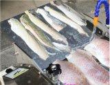 Кожа рыб Basa кальмара сома извлекая машину с 15-30PCS/Min