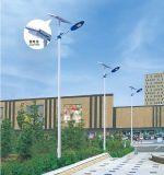 LEIDENE van de Verkoop IP65 20W 30W-200W van China van de hoge Macht Straatlantaarn in ZonneStraatlantaarn