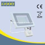 高品質LEDの洪水ライトSkl-Lfl0910