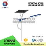 Neueste Solarstraßenlaternedes Produkt-30W/Lightaaa005