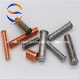 M5*15 Parafuso com rosca de aço inoxidável (PT) ISO13918