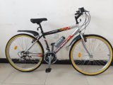 Neues Fahrrad des Berg26