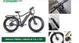 (TDE10Z-2) Felectric Fat vélo haute puissance