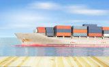LCL транспортные морские грузовые перевозки оператора из провинции Гуандун в Юго-Восточной Азии