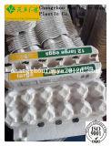 bandeja de huevos molde/bandejas de huevos de pasta de papel reciclado