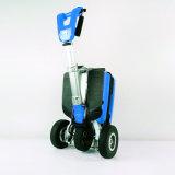 250 Вт мини-складные мобильности для скутера с маркировкой CE
