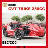 Trasmissione automatica ATV (NC-369) del EEC 250cc ATV CVT