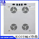 高い内腔の暖かく白いクリー族のCxb 3070の500W本当のワットの穂軸のプラントLEDはライトを育てる