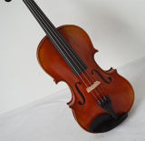 고품질 바이올린 프레임 단풍나무 Crenome 악기