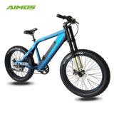 26inch LCD表示が付いている脂肪質のタイヤの土の電気自転車