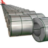 Haute qualité laminés à chaud de la bobine d'acier galvanisé prélaqué