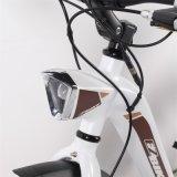 Bicicleta eléctrica maravillosamente diseñada de la ciudad con el marco de aluminio para el viajero