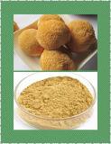 높은 순수성 유기 Monkeyhead 버섯 사자의 갈기 추출