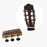 Вентилятор Fret Aiersi Smallman классической гитаре с музыкой на заводе (SC098SPFFF)