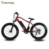 [إن15194] يوافق [أيموس] درّاجة كهربائيّة سمين [750و]