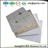 Clip de mayorista en falso techo de aluminio decorativo Panel con ISO9001