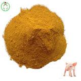 Maisglutin-Mahlzeit-Protein-Puder-Tierfutter-Geflügel führen