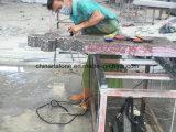 Monumento della traversa del granito della Cina per Cemetry