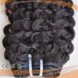 Afro Encaracolado Cabelo humano a tecelagem, cabelos tramas (PPG-L-0007)