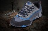 Ir de excursión color militar del azul del entrenamiento físico de los cargadores del programa inicial resistentes de los zapatos