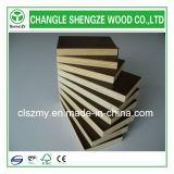 Shandong Changle 필름은 합판 바다 합판 건축 합판을 직면했다