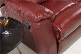 Wohnzimmer-Sofa mit dem modernen echtes Leder-Sofa eingestellt (455)