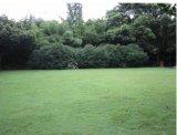 Защита скрытых полостей Antislip травы резиновый коврик