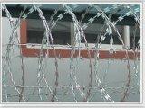 Alambre de púas galvanizado de la maquinilla de afeitar del alambre de acero