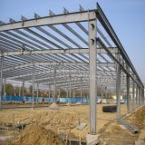 Estrutura de aço de construção de oficina de carvão com qualidade de Nice