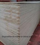 Madera contrachapada natural de empaquetado del abedul de la madera contrachapada del grado para los rectángulos