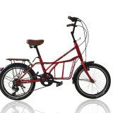Allgemeine Fahrrad-Rostfreie Stahldame Bike (NB-010)