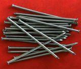 Best Priceの電流を通されたIron Common Wire Nail
