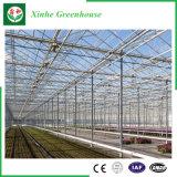 Chambres vertes en verre de culture de fleur/fruits/légumes avec le système de parasol