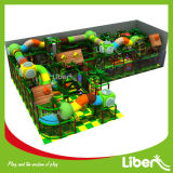 Gli Stati Uniti Shopping Mall Used Indoor Playground per Kids