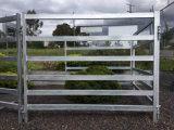Горячий DIP оцинкованной стальной трубы крупного рогатого скота во дворе панели
