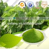 Het natuurlijke In water oplosbare Koper Chlorophyllin/Chlorophyll van het Natrium