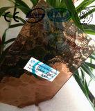 Het Gevormde Glas van Nashiji /Silesia/ Karatachi van het brons /Pyramid met Ce/ISO