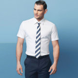 Mens Cotton 100% Highquality Short Sleeve Slim Business Shirts con Pointed Collar
