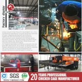 Heiße galvanisierte Geflügel-Rahmen in 20 Jahren Marken-Huhn-Maschinen-Fabrik-