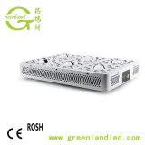 USA à spectre complet du marché de culture hydroponique de 600W 1000W 1200W 5W COB croître la vente en gros d'éclairage à LED