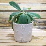 Pot van de Bloem van de Magnesia van de heet-verkoop de Eenvoudige voor de Decoratie van het Huis en van de Tuin