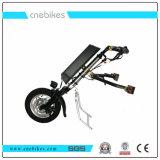 Precio barato 12pulgadas Electric 36V 350W Silla de Ruedas triciclo