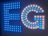 표시를 위한 모듈을 접착제로 붙이는 IP65 0.96W 정연한 모양 4xsmd5050 LED