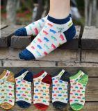 Calzini casuali divertenti variopinti della caviglia del cotone dei calzini animali svegli delle donne