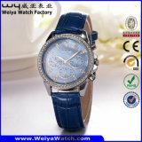 Orologio delle signore del quarzo della cinghia di cuoio di modo di OEM/ODM (Wy-099A)