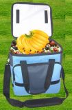 QUALITÄTS-neue Entwurfs-Form-Mittagessen-Picknick-Kühlvorrichtung Isolierbeutel nichtgewebter Polyester-Nylonbaumwollsegeltuch-Jean-Jutefaser PU-Belüftung-lederner Leat heißer verkaufen
