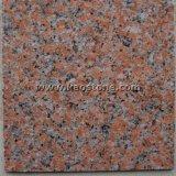 Mattonelle rosse G562 della Cina/naturali acero del granito per il rivestimento parete/del pavimento